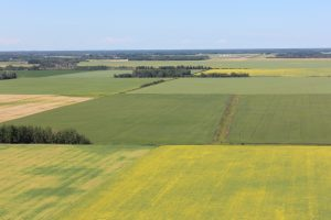 Mackenzie County, for Plant Protein Alliance of Alberta (PPAA)