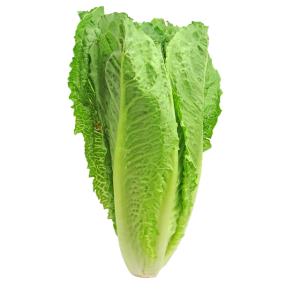 OneTrace tracks food like romaine lettuce through the supply chain to improve food safety