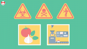 The new Safe Food for Canadians Regulations (SFCR)