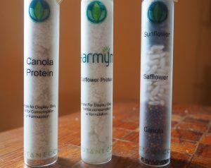 Protein powders from Botaneco